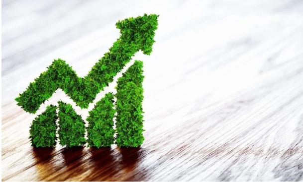 sustentarse_Sostenibilidad / una oportunidad de cambio para empresas