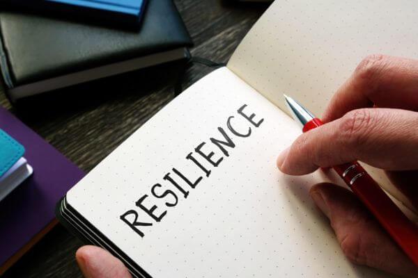 sustentarse_La-resiliencia-en-las-organizaciones