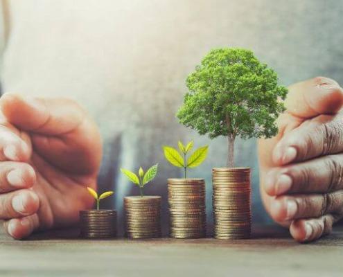 sustentarse_Estrategias-sobre-sustentabilidad