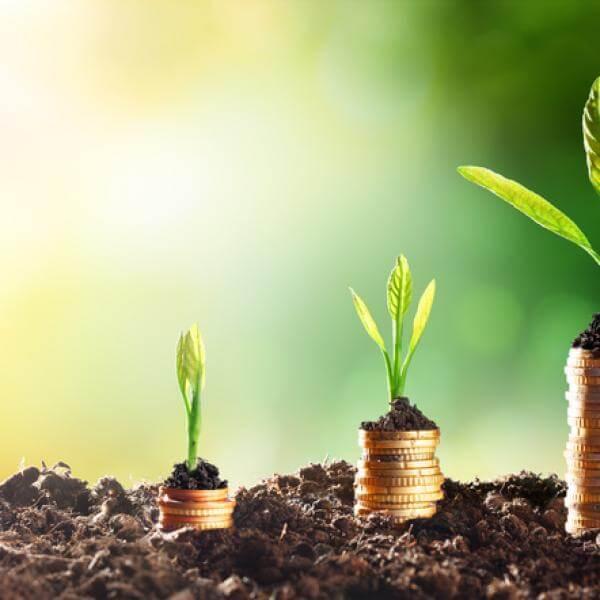 sustentarse_Competencias para el desarrollo sostenible