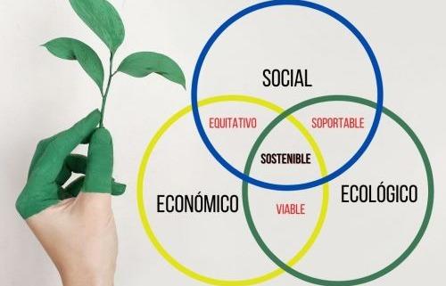 sustentarse_Cuál es la diferencia entre sustentabilidad y desarrollo sostenible