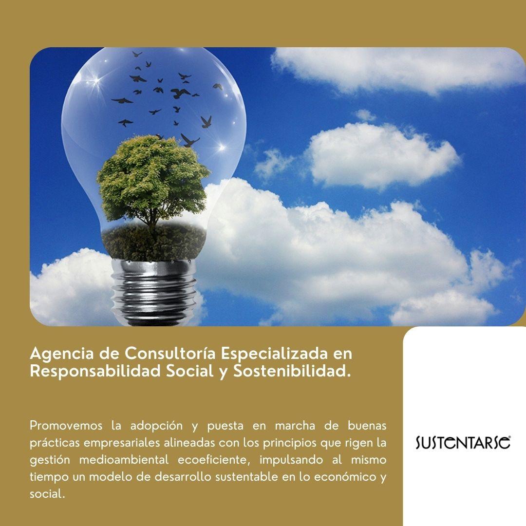 sustentarse_Conciencia del medio ambiente en empresas